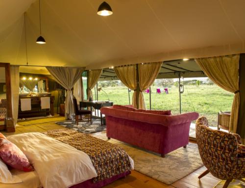 Kaskaz Mara Camp, Tansania