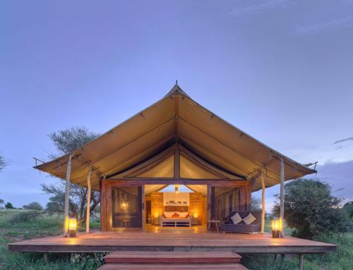 Tarangire Ndovu Tendet Camp, Tansania
